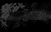 Орхидея черный (матовое)