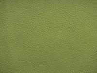 Aurora 11 Green