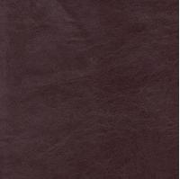 morgan bordo-brown