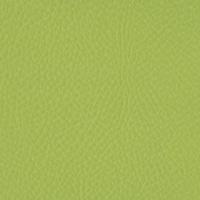 carnaval verde