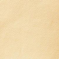 domus cream brule