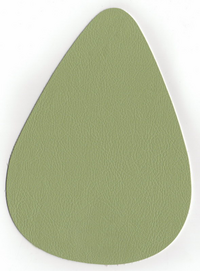 Mango 3823