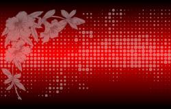 Орхидея черно-красный (матовое)