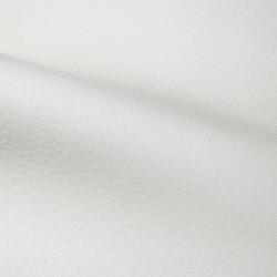 Polaris Snow