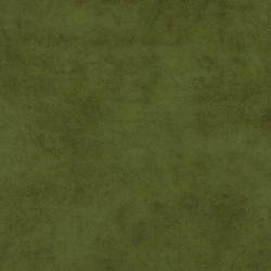 Сamel 10 green olive