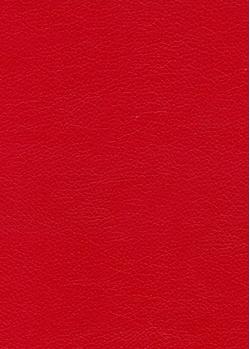 12 красный глянцевый