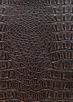 04 коричневый крокодил