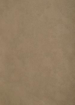 12 серо-бежевый матовый