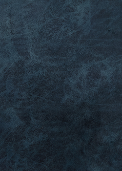 08 велюр синий