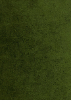 09 велюр болотный