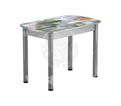 Стол раздвижной обеденный стеклянный с фотопечатью БРФ Р № 45