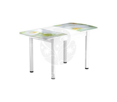 Стол раздвижной обеденный стеклянный с фотопечатью БРФ Р № 102